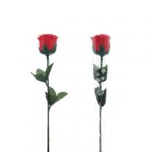 Rosa ros med LED-ljus