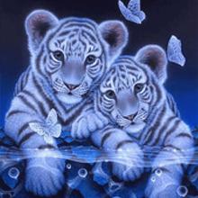 5D Diamond painting tiger motiv – 40 x 50 cm